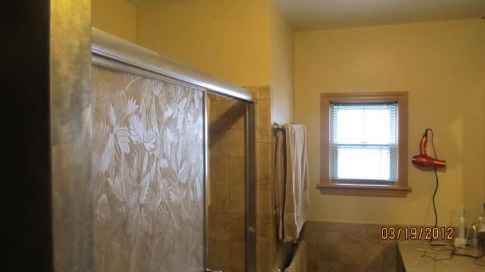 Bathroom Remodel After (Shower)